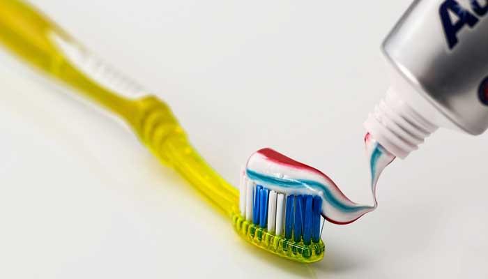 ยาสีฟัน คน สุนัข