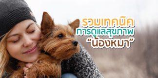 หมา การดูแลสุขภาพ