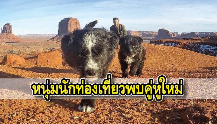 นักท่องเที่ยว สุนัข