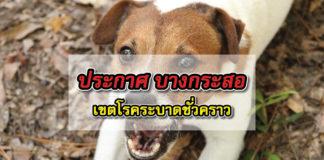 พิษสุนัขบ้า