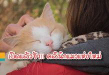 cat clinic